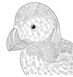Puffin bird adult coloring page vector