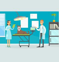 Veterinary clinic medical specialists examining vector