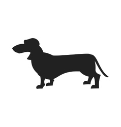 Dachshund Black Silhouette vector image vector image