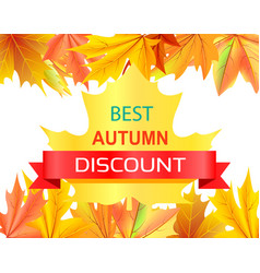 Best autumn discount promo advertisement on maple vector