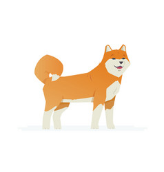 Cute akita inu - modern cartoon characters vector