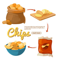 Info poster about potato chips cartoon vector