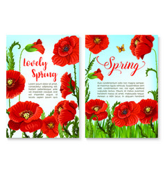 springtime holidays poster with poppy flower vector image