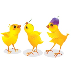 Three cartoon chicken vector image