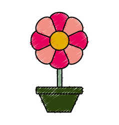 Beautiful flower in a pot icon vector