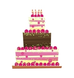 Birthday or wedding cake vector