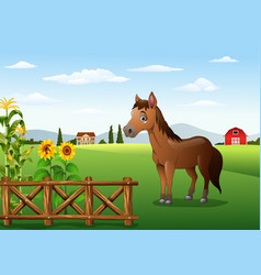 cartoon brown horse in the farm vector image