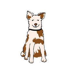 dog sitting waiting for owner vector image