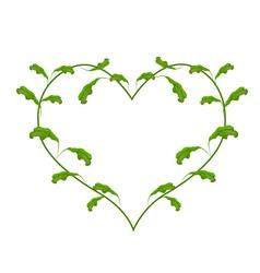 Fresh Green Vine Leaves in A Heart Frame vector
