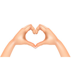 heart from hands isolated vector image
