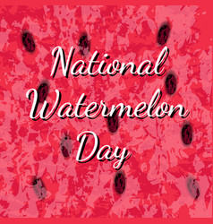 national watermelon day 3 august texture of the vector image