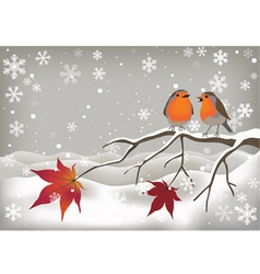 Pair of Robins vector