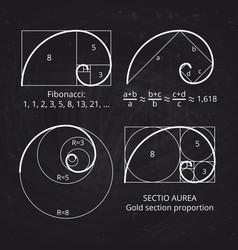 scheme golden ratio section fibonacci spiral vector image