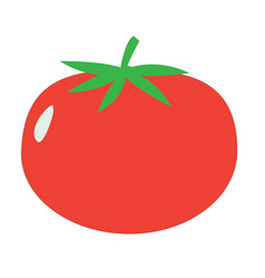 tomato sign tomato icon on white background flat vector image vector image