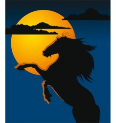 night horse vector image vector image