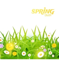 Bright Grass and Flowers vector
