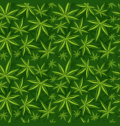 Cannabis weed marijuana leaves seamless vector