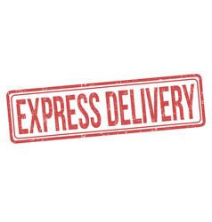 express delivery sign or stamp vector image