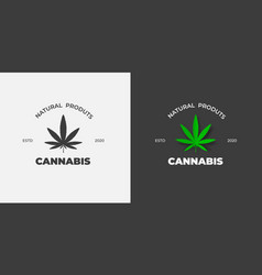 graphic label with a green leaf marijuana on a vector image