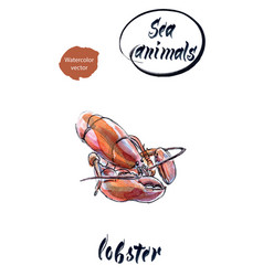 Lobster watercolor hand drawn vector