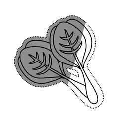 Spinach healthy food vector image