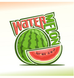 watermelon still life vector image vector image