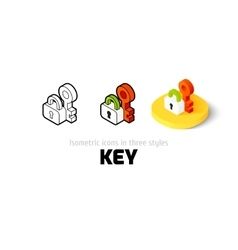 Key icon in different style vector image
