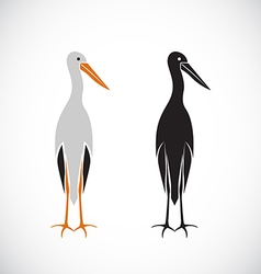Stork design vector image
