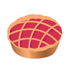 isolated pie icon vector image