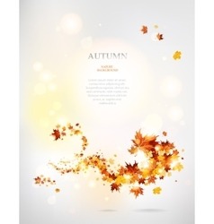Beautiful swirl of autumnal leaves vector