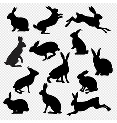 Big set rabbit isolated transparent background vector
