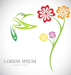 Flowers and hummingbirds vector