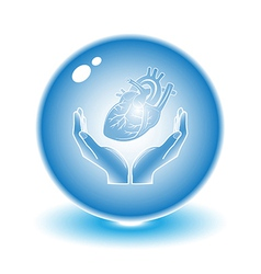 Protection of heart vector image