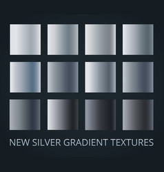 set of 12 different silver gradients isolated vector image