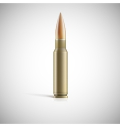 Single bullet Cartridge for rifle or AK 47 vector image