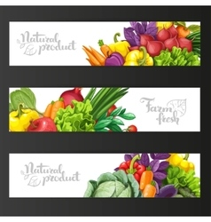 Three horizontal banners with fresh fruits and vector image