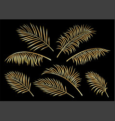 tropical set of golden hand drawn palm leaves vector image