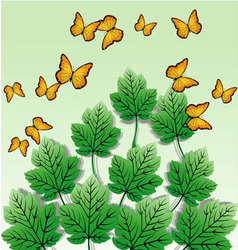 butterfly leaves background vector image vector image