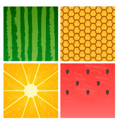 minimalistic ripe fruits vector image