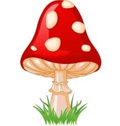 of mushroom amanita in a grass vector image