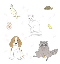 pet vector image