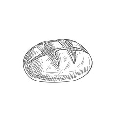 Round rye loaf baked pastry food isolated vector