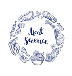 hand drawn meat elements vector image