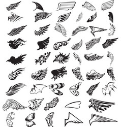 43 wing types vector