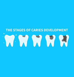 cartoon teeth shows stages caries development vector image