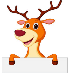 cute deer cartoon with blank sign vector image