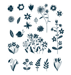 decorative elements spring and summer plants vector image