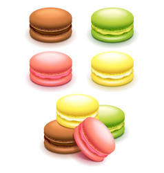 french macaroon cakes set isolated on white vector image vector image