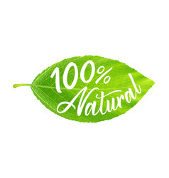 green leaf with inscription 100 percent natural vector image