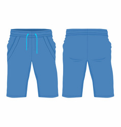 mens blue sport shorts vector image
